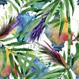 Teste padrão de bambu da árvore das folhas tropicais em um estilo da aquarela imagem de stock royalty free