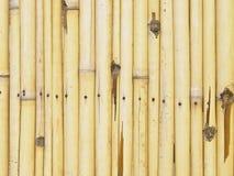Teste padrão de bambu da cerca Fotografia de Stock Royalty Free