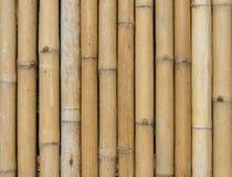 Teste padrão de bambu da textura do fundo da cerca Foto de Stock Royalty Free