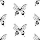Teste padrão de borboleta Foto de Stock