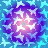 Teste padrão de borboleta colorido sem emenda Fotos de Stock Royalty Free