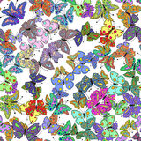 Teste padrão de borboleta colorido sem emenda Vetor Foto de Stock Royalty Free