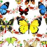 Teste padrão de borboleta da aquarela Fotos de Stock Royalty Free