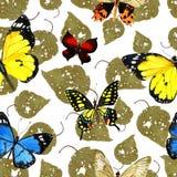 Teste padrão de borboleta da aquarela Fotos de Stock
