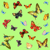 Teste padrão de borboletas Imagens de Stock