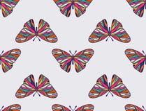 Teste padrão de borboletas coloridas Imagens de Stock