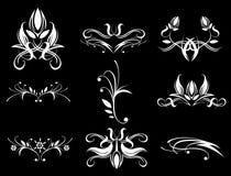 Teste padrão de flor Imagens de Stock