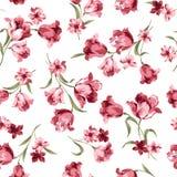 Teste padrão de flor Fotos de Stock Royalty Free