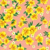 Teste padrão de flor Imagens de Stock Royalty Free