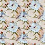 Teste padrão de flor branco do hibiscus, pintura da aquarela Imagem de Stock Royalty Free