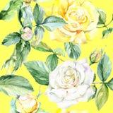 Teste padrão de flor cor-de-rosa do Wildflower em um estilo da aquarela ilustração do vetor