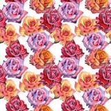 Teste padrão de flor cor-de-rosa do Wildflower em um estilo da aquarela isolado fotografia de stock royalty free
