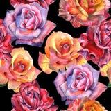 Teste padrão de flor cor-de-rosa do Wildflower em um estilo da aquarela isolado ilustração stock