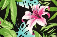 Teste padrão de flor cor-de-rosa grande na tela preta ilustração do vetor