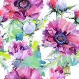 Teste padrão de flor da papoila do Wildflower em um estilo da aquarela ilustração stock