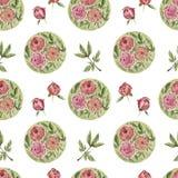 Teste padrão de flor da peônia Fotos de Stock Royalty Free