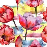 Teste padrão de flor da tulipa do Wildflower em um estilo da aquarela ilustração royalty free