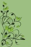 Teste padrão de flor decorativa Fotos de Stock