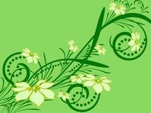 Teste padrão de flor decorativa Fotografia de Stock Royalty Free