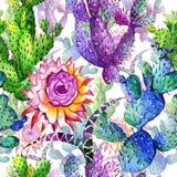 Teste padrão de flor do cacto do Wildflower em um estilo da aquarela ilustração stock