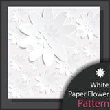 Teste padrão de flor do Livro Branco - vetor Fotografia de Stock Royalty Free