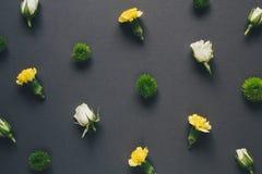 Teste padrão de flor no fundo escuro Imagem de Stock Royalty Free