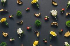 Teste padrão de flor no fundo escuro Imagens de Stock
