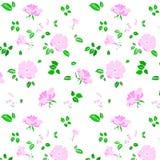 Teste padrão de flor Roseship ilustração royalty free