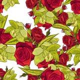 Teste padrão de flor sem emenda do vetor Fotos de Stock Royalty Free