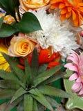 Teste padrão de flor tropical Imagens de Stock Royalty Free