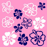 Teste padrão de flor Vectorial ilustração royalty free