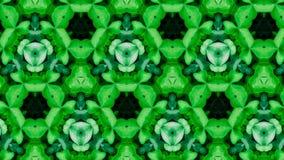 Teste padrão de flor verde abstrato Imagem de Stock Royalty Free