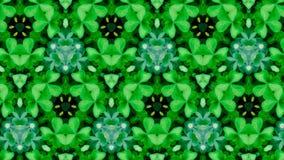 Teste padrão de flor verde abstrato Fotos de Stock Royalty Free