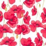 Teste padrão de flores da papoila Fotografia de Stock