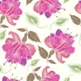 teste padrão de flores do fúcsia da aquarela Fotografia de Stock