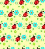 Teste padrão de flores do joaninha Imagens de Stock Royalty Free