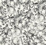 Teste padrão de flores isolado realístico Fundo barroco do vintage Dogrose de Rosa, rosehip, urze wallpaper Gravura do desenho ilustração stock