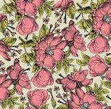 Teste padrão de flores isolado realístico Fundo barroco do vintage Dogrose de Rosa, rosehip, urze wallpaper Gravura do desenho Fotografia de Stock