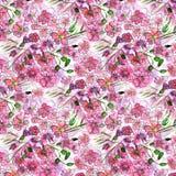Teste padrão de flores, rosa do vermelho com aquarela das folhas Fotografia de Stock Royalty Free