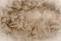 Teste padrão de Frost Imagens de Stock Royalty Free