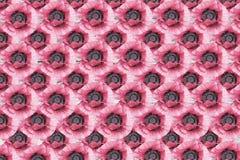 Teste padrão de grade floral do sumário cor-de-rosa das papoilas Fotografia de Stock