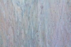 Teste padrão de mármore com veias Fotos de Stock