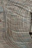 Teste padrão de madeira contínuo abstrato do círculo Imagem de Stock