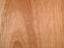 Teste padrão de madeira da luz da grão Imagens de Stock Royalty Free