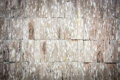 Teste padrão de madeira da parede da telha do grunge do Sepia Fotografia de Stock Royalty Free
