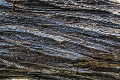 teste padrão de madeira do fundo da textura Imagens de Stock