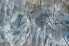 Teste padrão de madeira velho rachado rústico tonificado Textura de madeira do efeito da quebra, fundo do estilo do vintage fotografia de stock