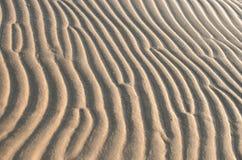 Teste padrão de ondas da areia Imagens de Stock Royalty Free