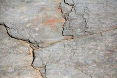 Teste padrão de pedra Fotos de Stock