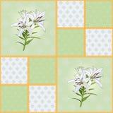 Teste padrão de quadrados verdes com a flor do lírio branco ilustração stock